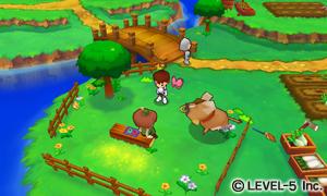 Fantasy-Life_2011_10-15-11_007