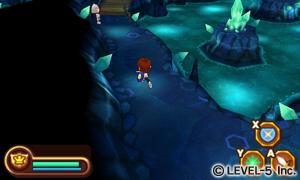 Fantasy-Life_2011_10-15-11_009