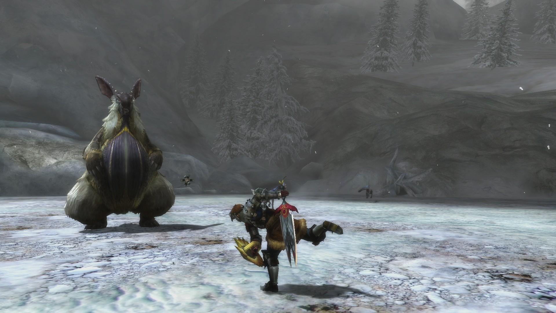 Monster-Hunter-3-Ultimate_2012_12-27-12_004