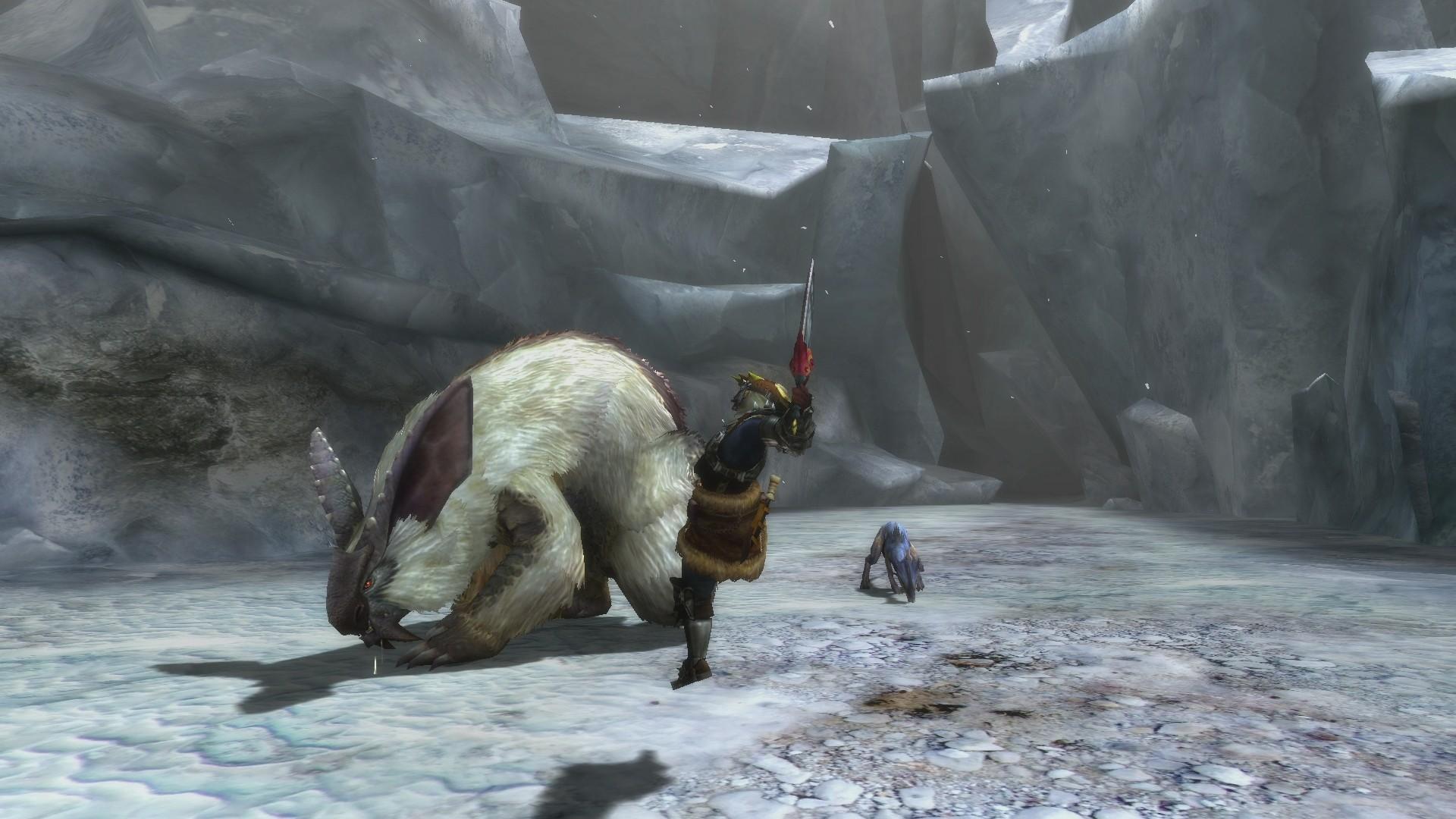 Monster-Hunter-3-Ultimate_2012_12-27-12_005