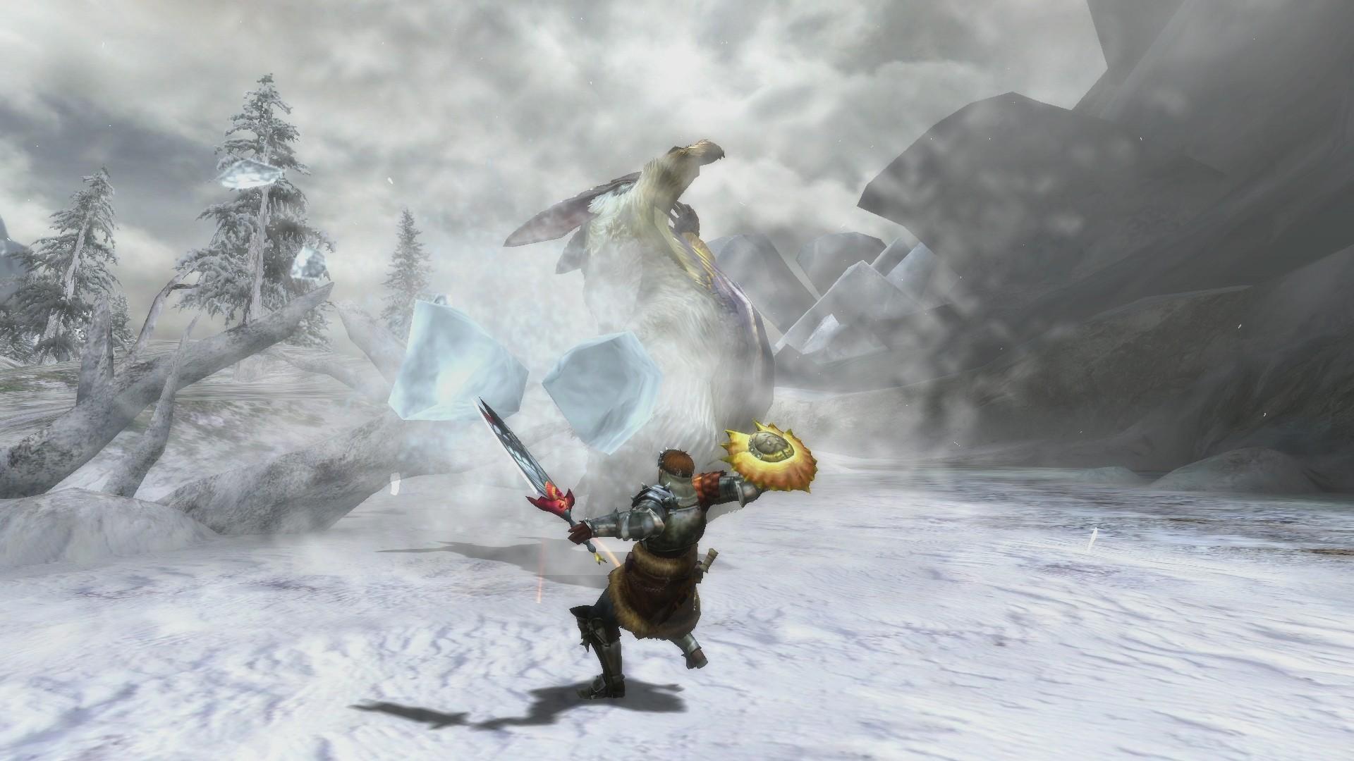 Monster-Hunter-3-Ultimate_2012_12-27-12_003
