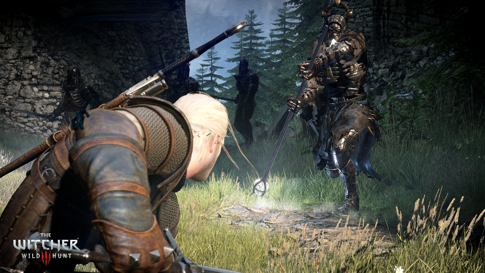 The-Witcher-3-Wild-Hunt_2014_06-05-14_001