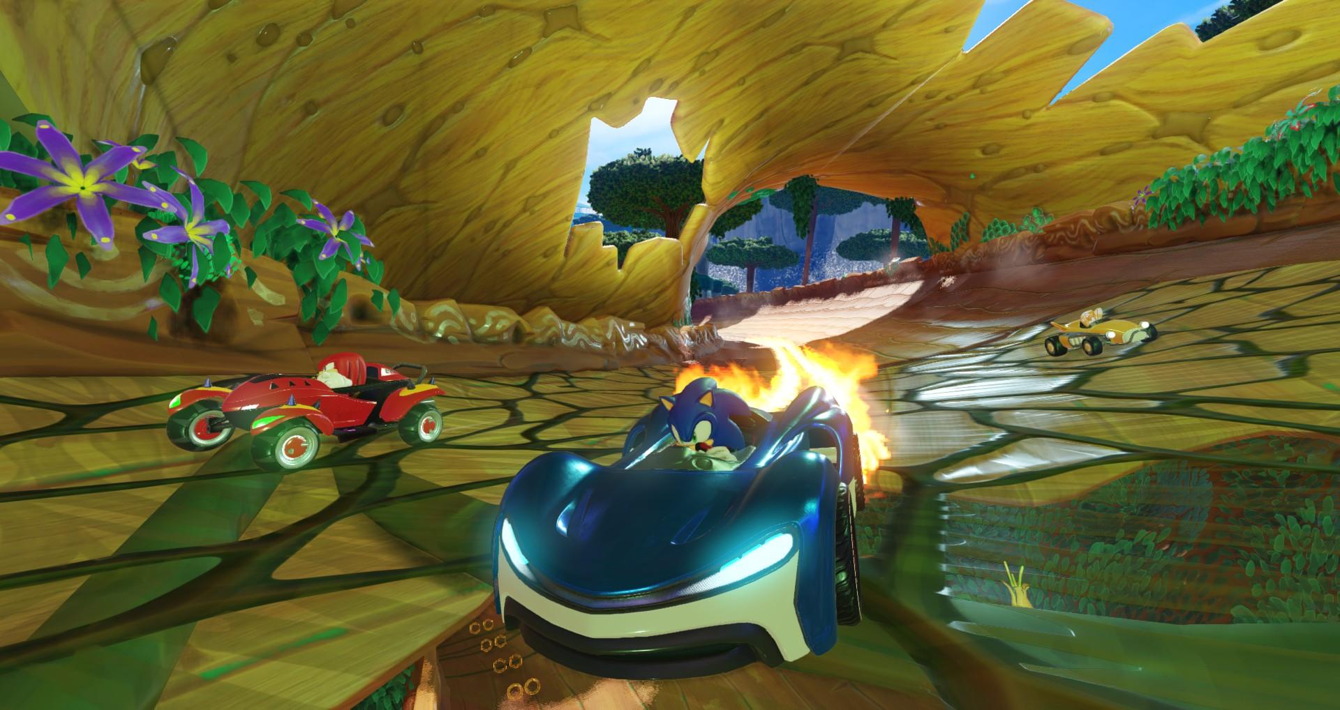 Team-Sonic-Racing_Wal-mart_05-30-18_003.