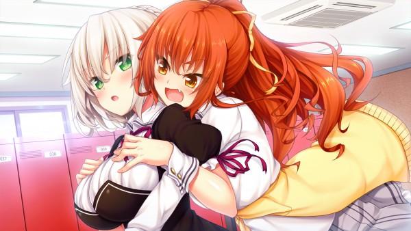 Nora to Oujo to Noraneko Heart HD Version