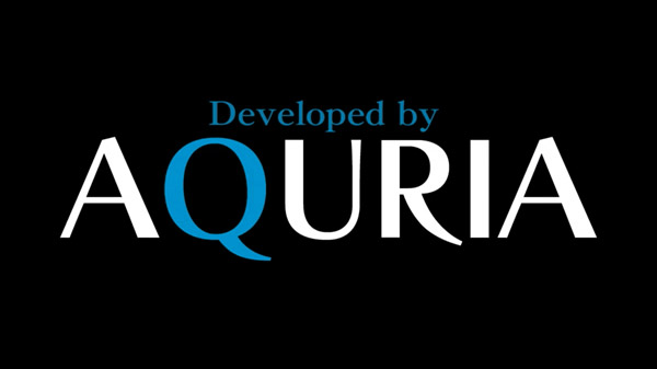 Aquria hiring 3D motion designer for PS4 fantasy RPG with anime taste