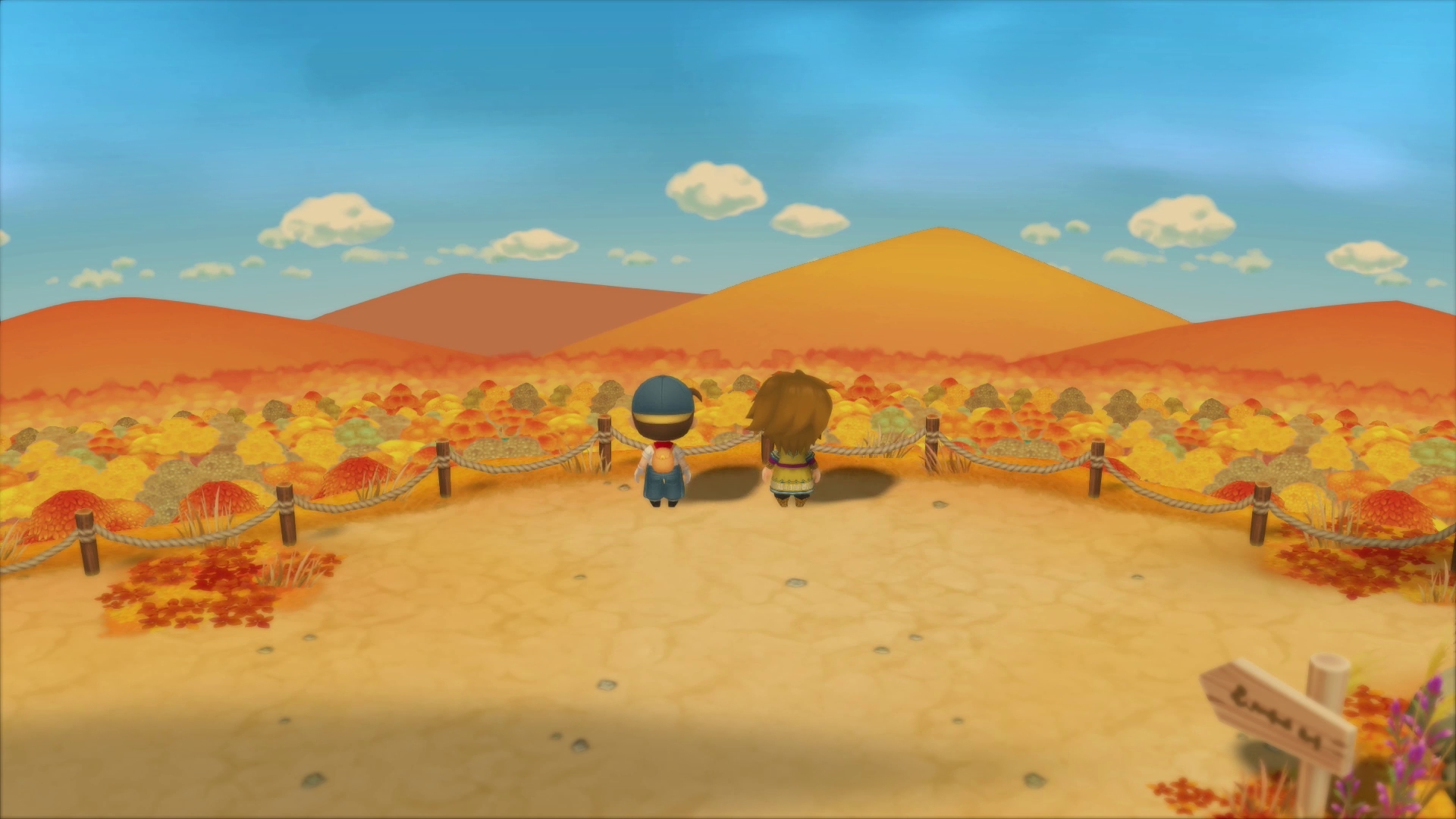 Story-of-Seasons-Friends-of-Mineral-Town_2020_05-15-20_014