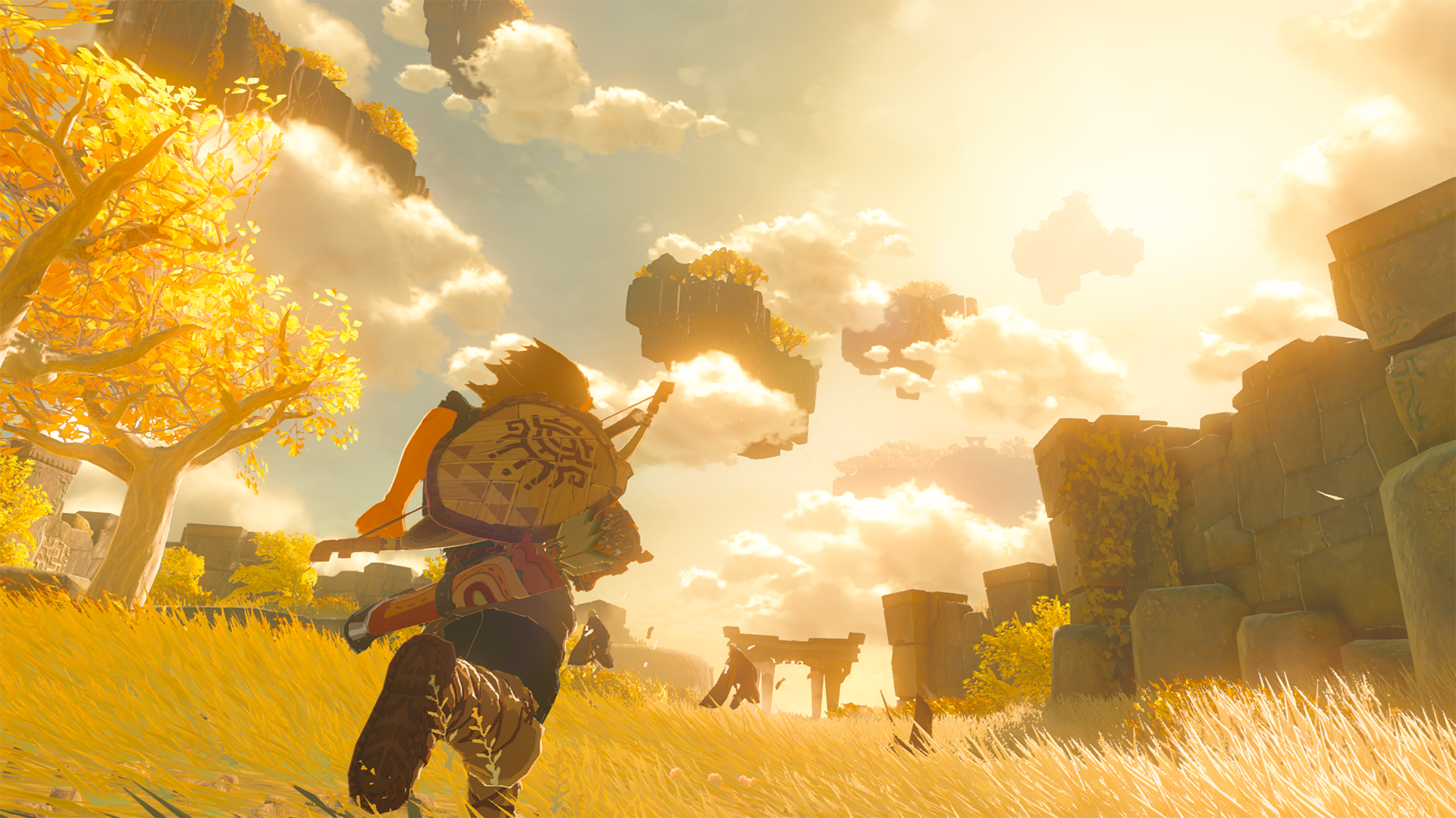 The Legend of Zelda Breath of the Wild Sequel 2021 06 15 21 008